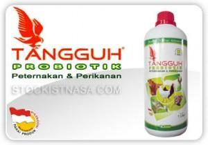 TANGGUH PROBIOTIK